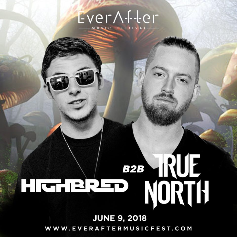 highbred-true-north (1)